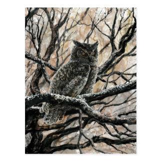Winter-Eule Postkarte