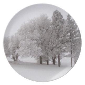 Winter Frost bedeckte Bäume Essteller