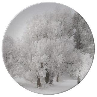 Winter Frost bedeckte Bäume Porzellanteller