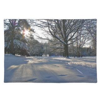 Winter im Park Tischset