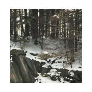 Winter in Michigans oberer Halbinsel auf Leinwand