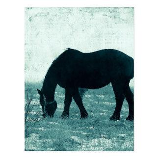 Winter Percheron Postkarte