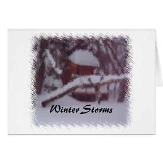 Winter-Stürme Karte