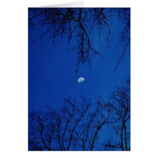 Winter-Vollmond mit Bäumen Grußkarte