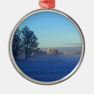 Winter weidet St- Josephinsel Rundes Silberfarbenes Ornament
