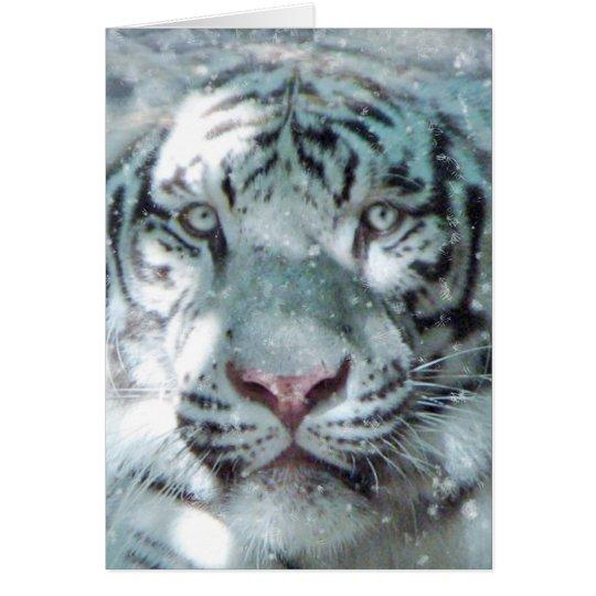 Winter-Weiß-Tiger Grußkarte