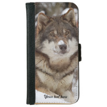 Winter Wolf Resting iPhone 6 Wallet Case