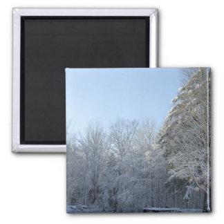 Winterliche Baum-Szene Quadratischer Magnet