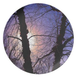 Winterliche Niederlassungs-Platte Essteller