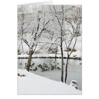 Winterteich-Feiertagskarte Karte
