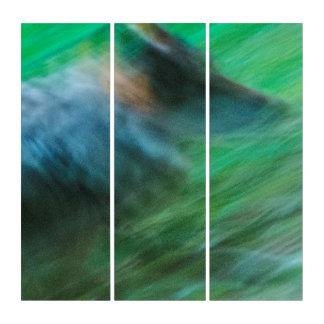 Wolf-Geschwindigkeit AcryliPrint®HD Triptychon