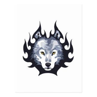 WOLF-HAUPTKLEINES POSTKARTE