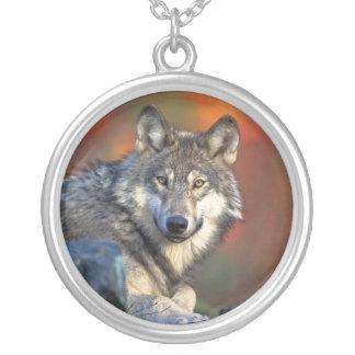 Wolfhalsketten Halskette Mit Rundem Anhänger