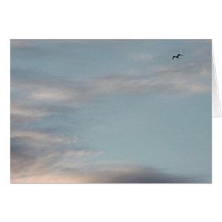 Wolken am Sonnenuntergang mit Vogel: Karte