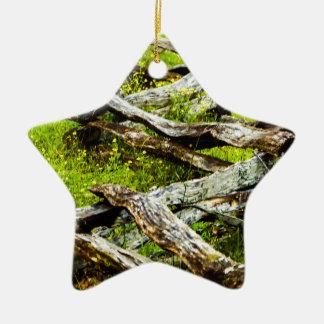 Wood_Fence.JPG Keramik Ornament