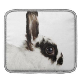 Wooly Kaninchen Jerseys iPad Sleeve