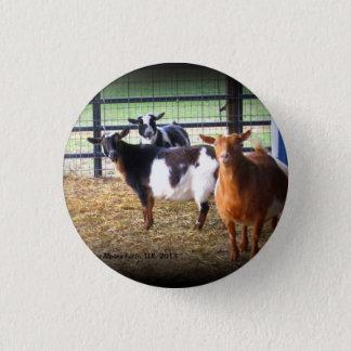 Wunder-Ziegen Runder Button 3,2 Cm