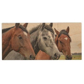 Wunderbare Pferdestallions-Fotografie Holz USB Stick