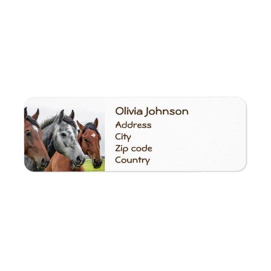 Wunderbare Pferdestallions-Fotografie Rücksendeetiketten