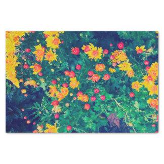 Wunderliche wilde Gänseblümchen-Blumen der Seidenpapier
