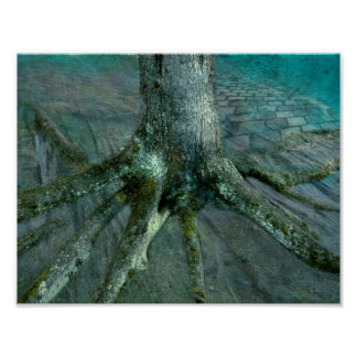 Wurzel eines Baums Poster
