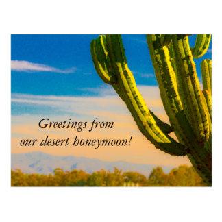 Wüsten-Kaktussaguaro-Flitterwochen danken Ihnen Postkarte