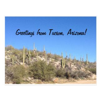 Wüsten-SüdwestSaguaro Tucsons Arizona Postkarte