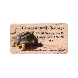 Wüstenschildkröte-Adressen-Etiketten Adressaufkleber