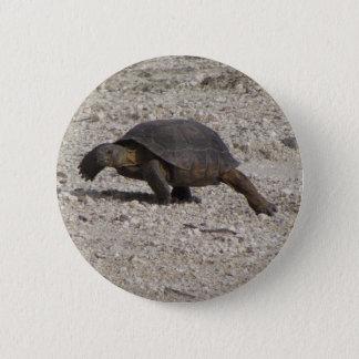 Wüstenschildkröte Runder Button 5,1 Cm