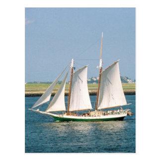 Yacht in Boston-Hafen Postkarte
