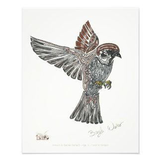 YAP | Stammes- Sparrowhawk | Jugend-Kunst-Projekt Fotografien