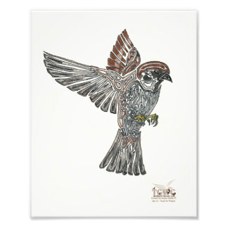 YAP | Stammes- Sparrowhawk | Jugend-Kunst-Projekt Kunstphotos