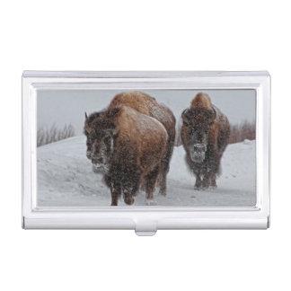 Yellowstone-Bison Visitenkarten Dose