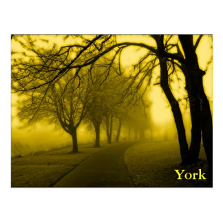 York-Flussufer Postkarte