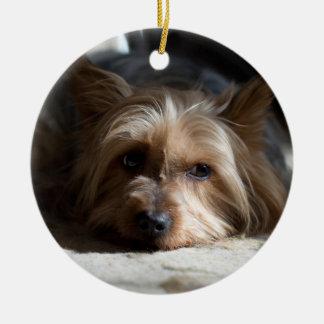 yorkhire/seidiges Terrier-Verzierungen Rundes Keramik Ornament