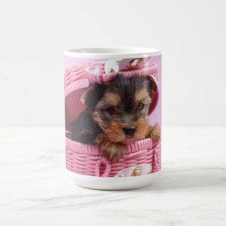 Yorkshire-Terrierwelpe Tasse
