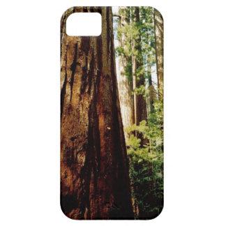 Yosemite-Rothölzer Etui Fürs iPhone 5