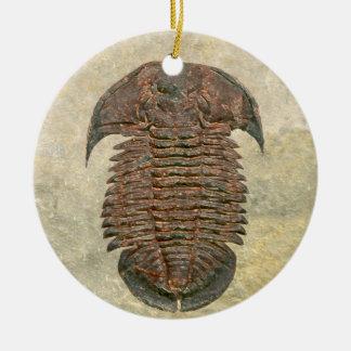 Yuepingia Fossil Trilobite Keramik Ornament