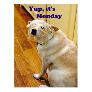 Yup, ist es Montag-Welpe Postkarte
