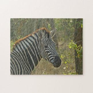Zebra-Puzzlespiel