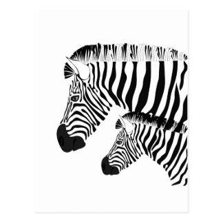 Zebra und Baby Postkarte