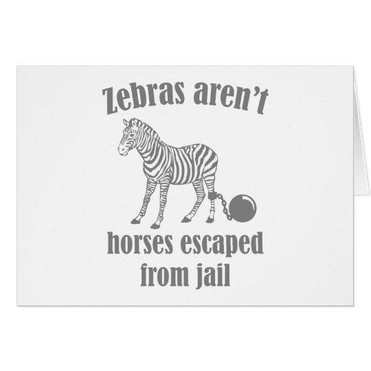 Zebras sind nicht die Pferde, die vom Gefängnis Karte