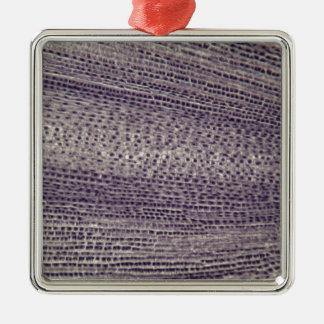 Zellen einer Saubohne wurzeln (Viciabohne) unter Silbernes Ornament