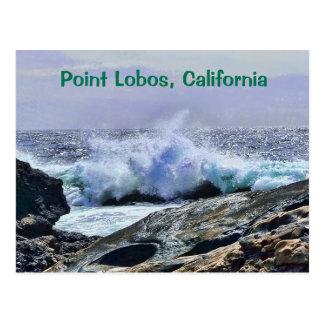 Zentrale Küste Kalifornien Punkt-Lobos Postkarte