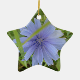 Zichorie-blaue lila Blume mit Blumen Keramik Ornament
