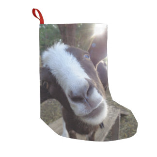 Ziegebarnyard-Vieh Kleiner Weihnachtsstrumpf