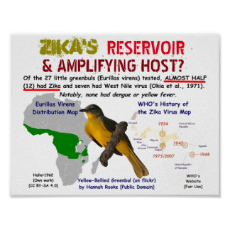 Zikas Reservoir u. verstärkenwirt durch RoseWrites Poster