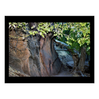 Zion Nationalpark Poster