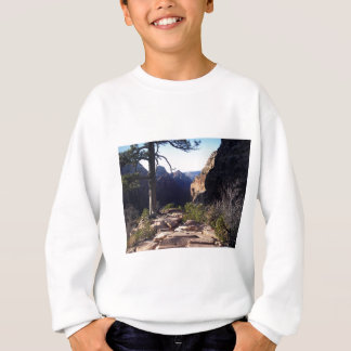 Zion Tal Sweatshirt