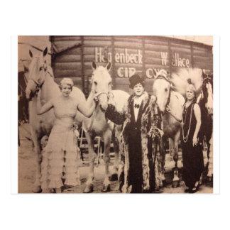 Zirkus-Ausführende und weiße Pferde Postkarte